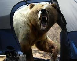 Bear Attack Spray - Wilderness Trekkers